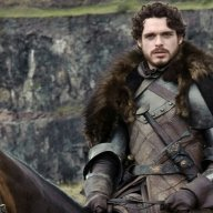 Robb The Young Wolf