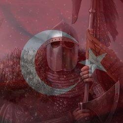 Bannerlord Türkiye